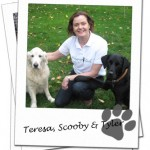 Wagging Tails Oxfordshire franchisee, Teresa Bowers with her dogs Scooby and Tyler