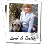 sarah-dexter-polaroid