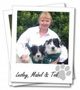 Wagging Tails franchisee Lesley Birch with her dogs Ted and Mabel