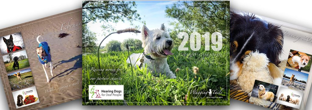 Wagging Tails 2019 Charity Calendar in aid of Hearing Dogs for Deaf People